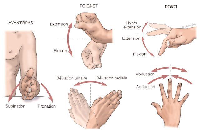 position-fr