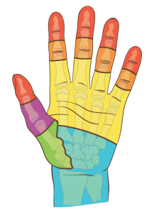 COLOR CODE : Emergency splinting for hand & wrist fractures